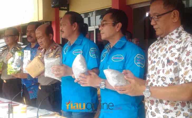 Ekspose 25 Kg Sabud an 25 ribu butir Pil Ekstasi