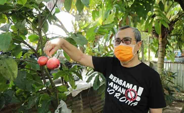 Gubernur Riau Panen Hasil Tani