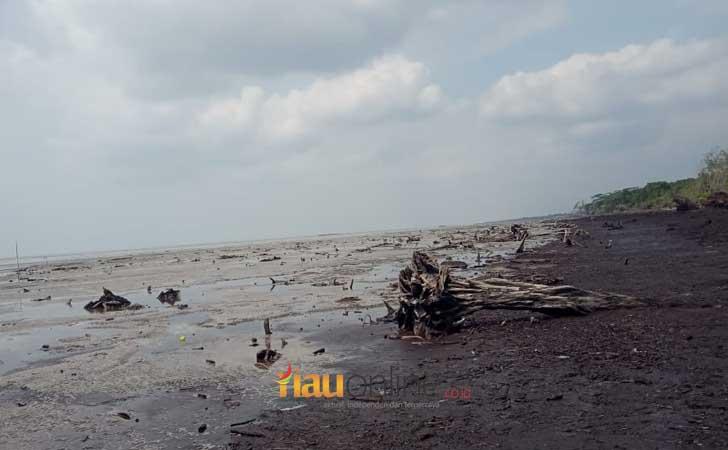 Daratan Pulau Bengkalis Berkurang