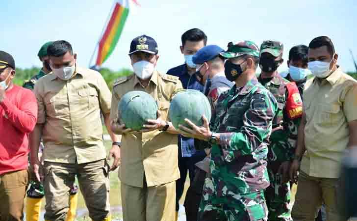 Gubernur Riau Panen Raya