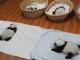 Hewan Panda China3