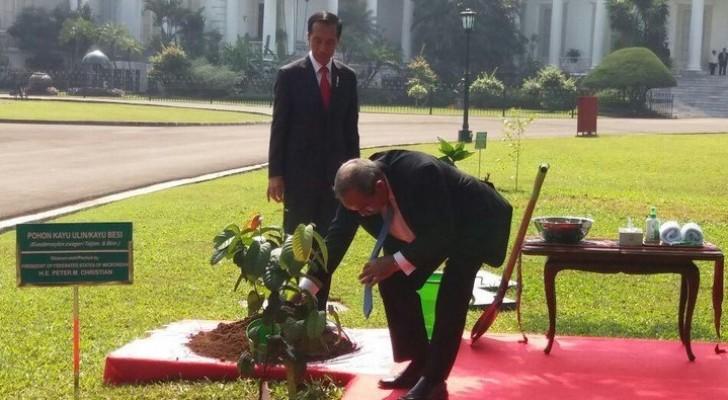Presiden Federasi Serikat Mikronesia menanam pohon di Istana Bogor