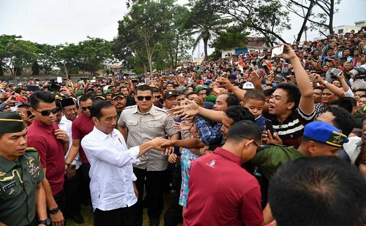 Jokowi ke Rohil8