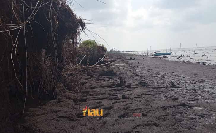 Pulau Bengkalis Abrasi