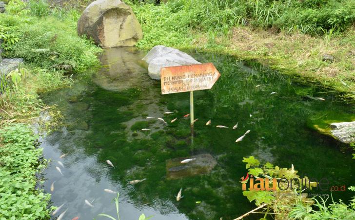 Taman Kalikuning3