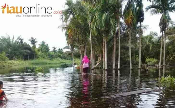 Banjir-di-Inhil.jpg