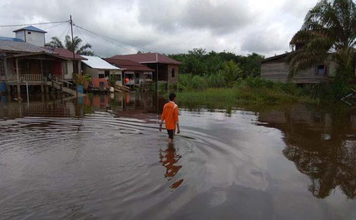 Banjir-di-pelalawan2.jpg