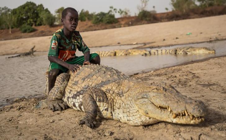 Bocah-tunggangi-buaya-di-skolam-di-Bazoule-Burkina-Faso.jpg