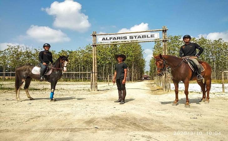 Horse-Power-Tambusai.jpg