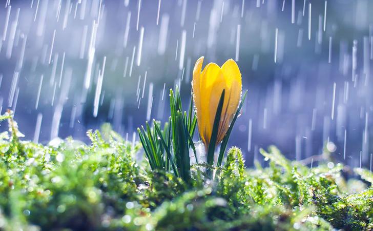 Hujan17.jpg