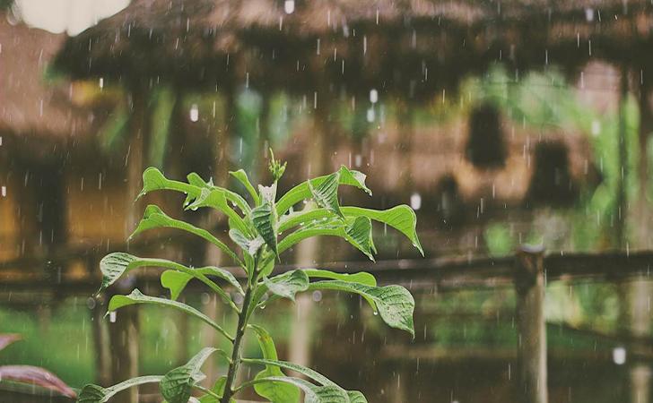Hujan36.jpg