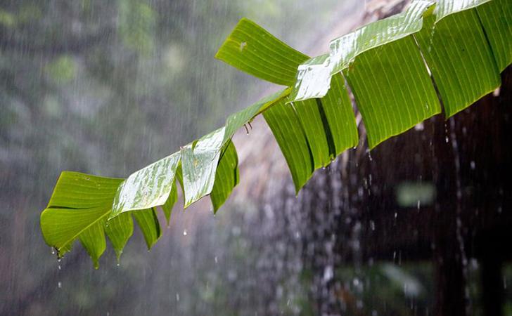 Hujan4.jpg