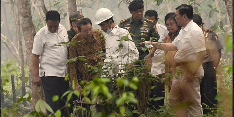 Jokowi-Kunjungan-Kerja-ke-Kalsel-dan-Kalteng.jpg