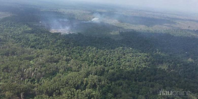 Kawasan-Taman-Nasional-Tesso-Nilo-Dibakar.jpg