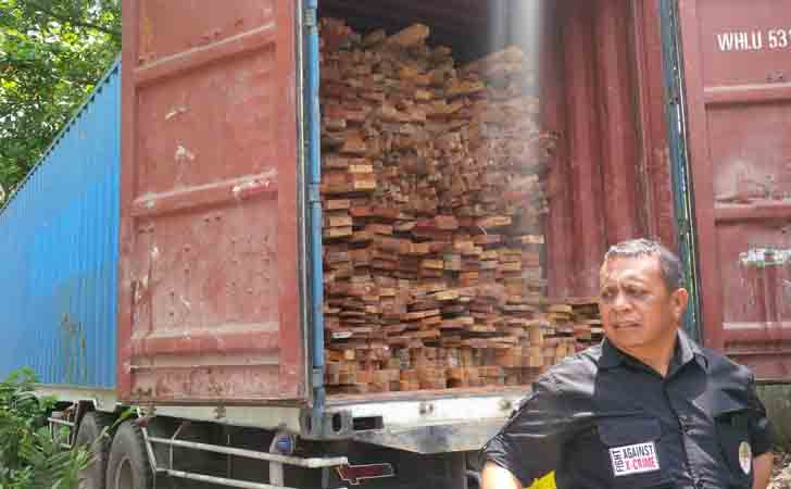 Kayu-Tangkapan-Ilegal-Logging.jpg