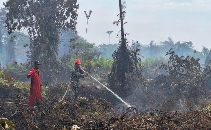 Kebakaran-Hutan-dan-Lahan.jpg