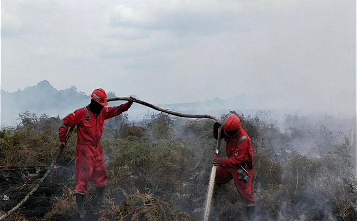 Kebakaran-Hutan-dan-Lahan4.jpg