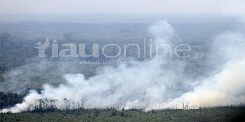 Kebakaran-Lahan-dan-Hutan.jpg