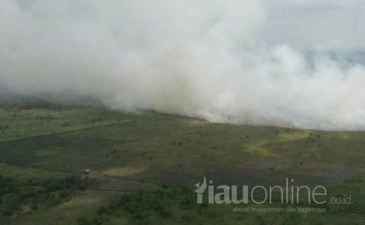 Kebakaran-Lahan-di-Tanah-Putih-Rohil.jpg