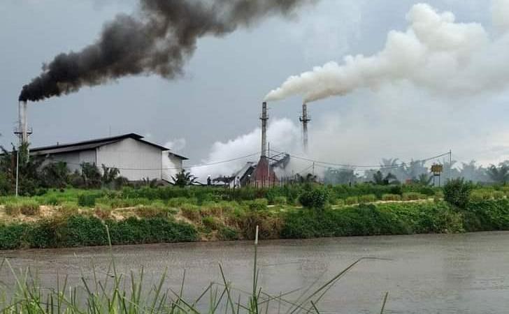 Pabrik-kelapa-sawit2.jpg