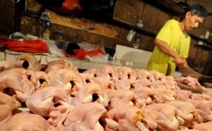 Pedagang-Ayam-Potong.jpg