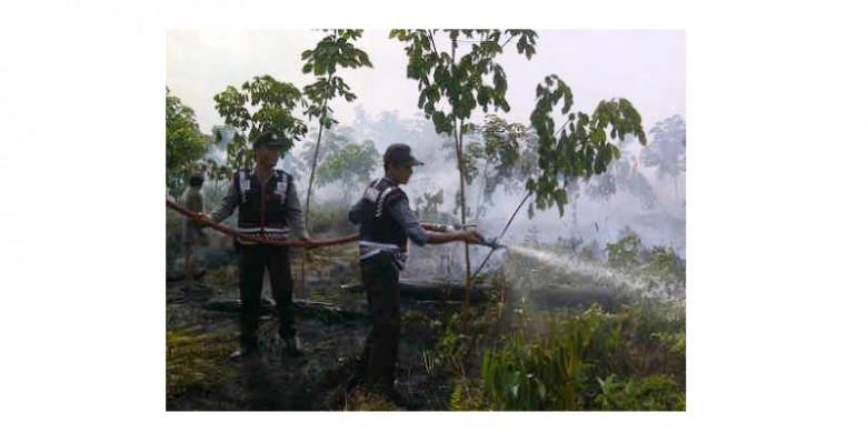 Pemadaman-Karhutla-di-Kuala-Cenaku.jpg