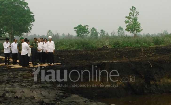 Presiden-Jokowi-Tinjau-Lahan-Terbakar.jpg
