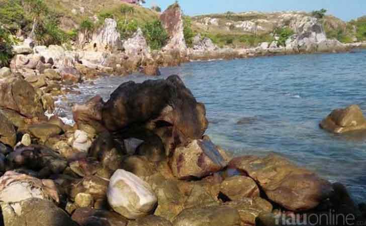 Inilah Kelebihan Dan Keunggulan Pulau Jemur Dibandingkan Objek Wisata Lainnya