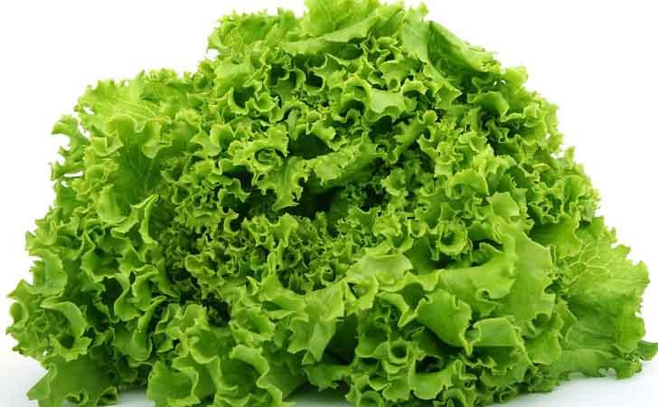 Sayur-Salada.jpg