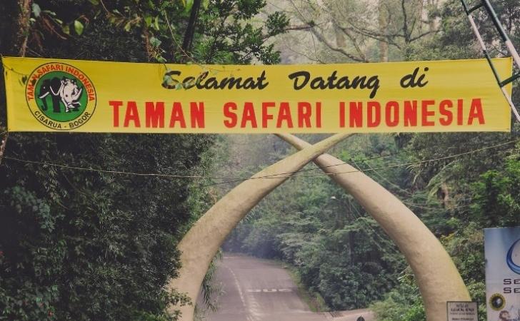 Taman-Safari-Indonesia.jpg