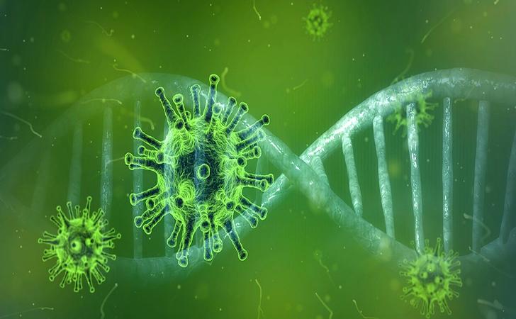 Virus-corona62.jpg