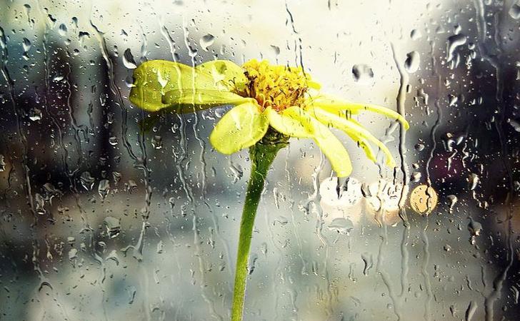 hujan12.jpg