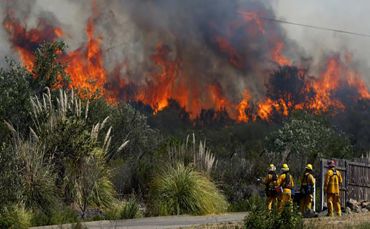 kebakaran-hutan2.jpg