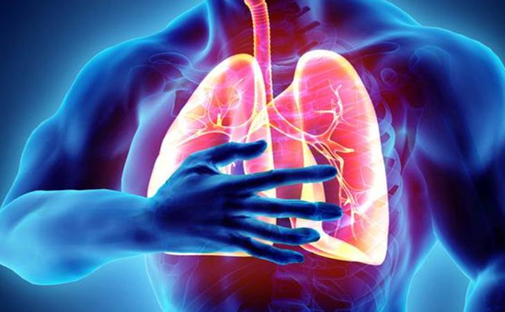 paru-paru2.jpg