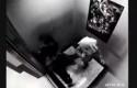 Aksi-gadis-di-lift.jpg