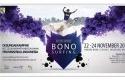 Design-Bono-Surfing.jpg