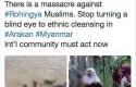 Foto-Hoax-Rohingya.jpg