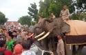 Gajah-pawai.jpg