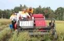 Gubernur-Riau-Coba-Traktor.jpg