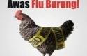 Ilustrasi-flu-burung.jpg