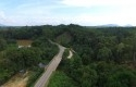 Jalan-Perbatasan-Kalimantan-Entikong-Kembayang.jpg