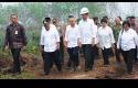 Jokowi-Jalan-jalan-di-Rimbo-Panjang.jpg
