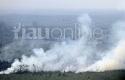 Kebakaran-Hutan-Riau1.jpg