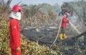 Kebakaran-Hutan-dan-Lahan2.jpg