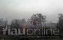 Kebakaran-Lahandi-Payung-Sekaki.jpg