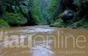 Objek-Wisata-Sungai-Kopu-Kampar.jpg