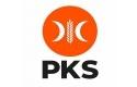 PKS3.jpg