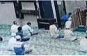 Penikaman-Imam-Masjid-Al-Falah.jpg