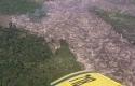 Perambahan-di-Taman-Nasional-Tesso-Nilo.jpg