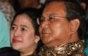 Prabowo-Puan-Maharani.jpg